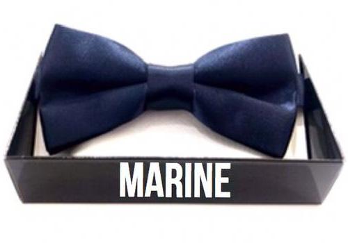 noeud-papillon-bleu-marine